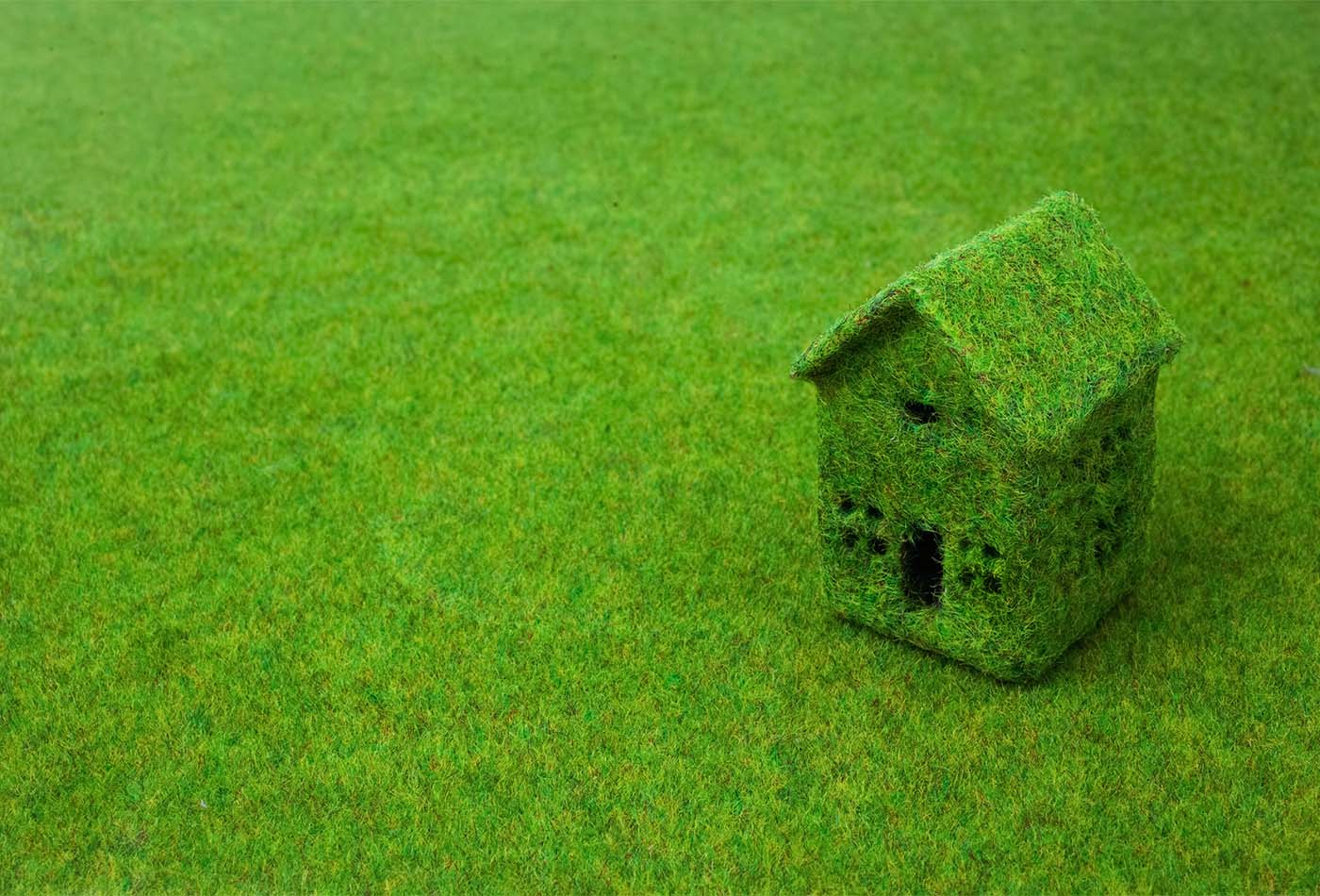 Green small house on green grass - eco-friendly holiday letting