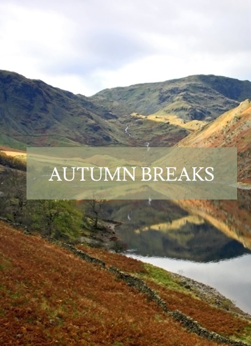 lake district holiday cottages to rent lakes cottage